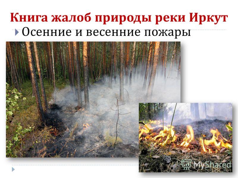 Книга жалоб природы реки Иркут Осенние и весенние пожары