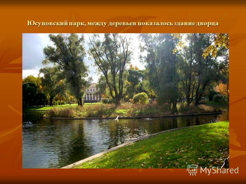 Юсуповский парк, между деревьев показалось здание дворца