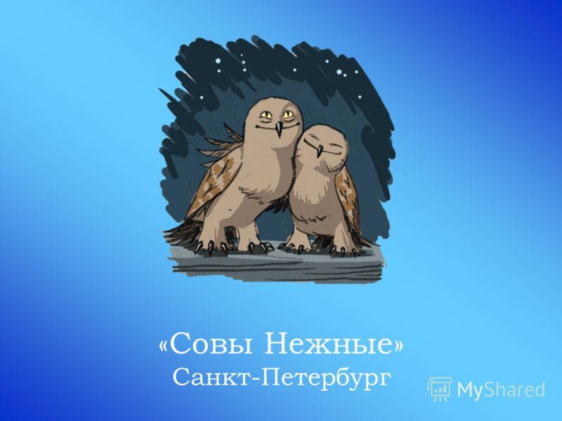 «Совы Нежные» Санкт-Петербург