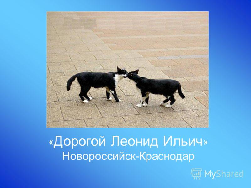 « Дорогой Леонид Ильич » Новороссийск-Краснодар