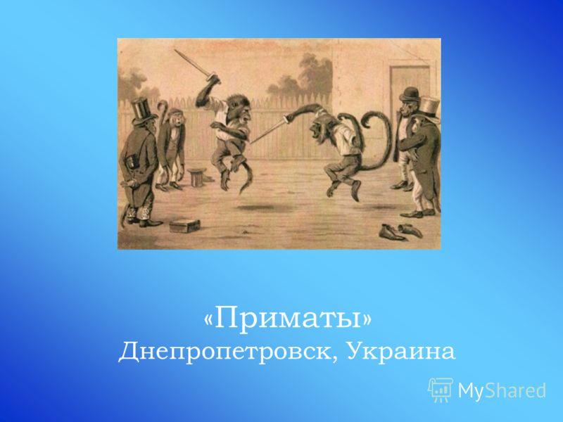 «Приматы» Днепропетровск, Украина