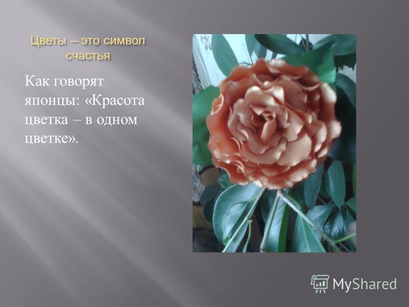 Цветы – это символ счастья Как говорят японцы : « Красота цветка – в одном цветке ».