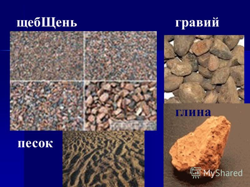 Большую пользу почве приносят кроты и червяки