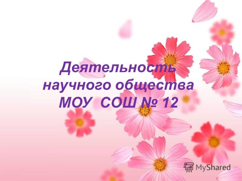 Деятельность научного общества МОУ CОШ 12