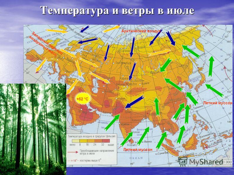 Температура и ветры в июле Западный перенос воздушных масс Летний муссон Арктический воздух +52 °С