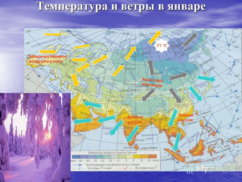 Температура и ветры в январе Азиатский максимум Западный перенос воздушных масс Зимний муссон Зимний муссон -71 °С