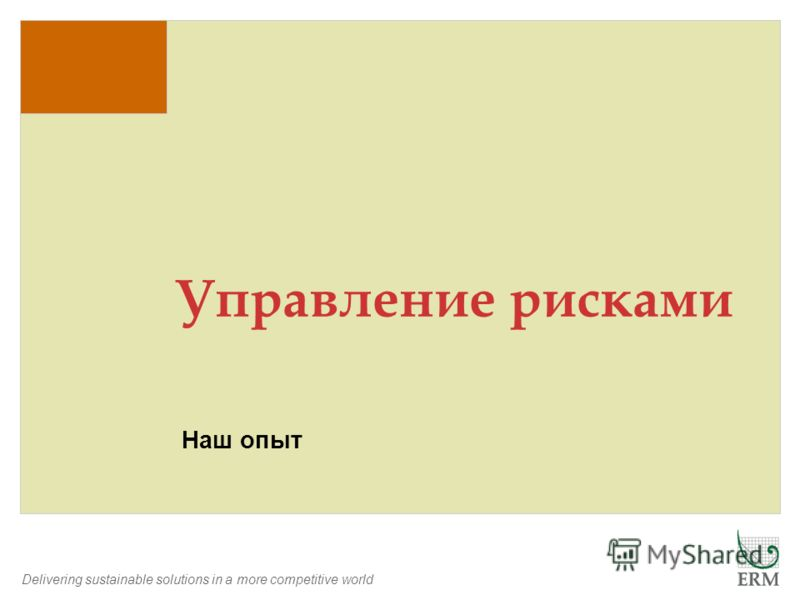 Delivering sustainable solutions in a more competitive world Наш опыт Управление рисками