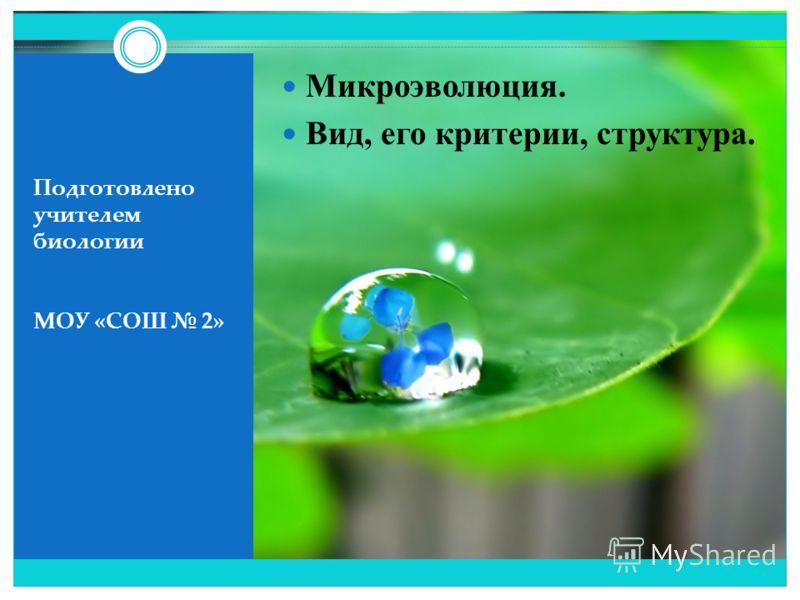 Подготовлено учителем биологии МОУ «СОШ 2» Микроэволюция. Вид, его критерии, структура.