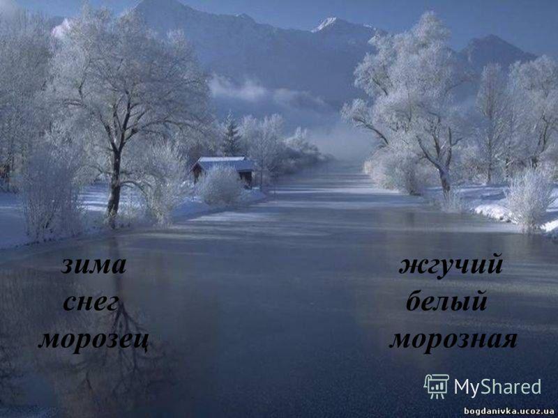 зима жгучий снег белый морозец морозная