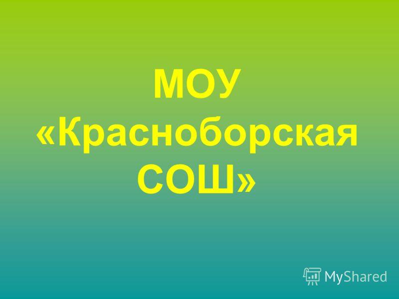 МОУ «Красноборская СОШ»