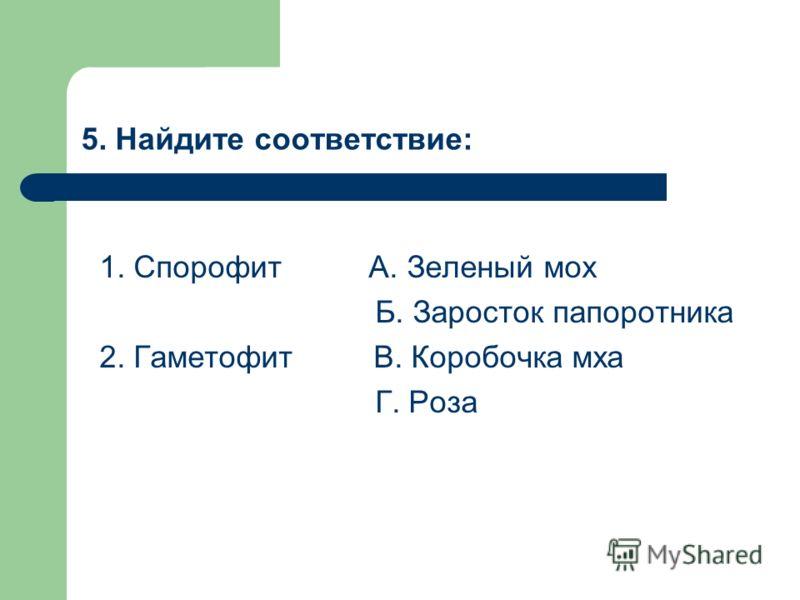 5. Найдите соответствие: 1. Спорофит А. Зеленый мох Б. Заросток папоротника 2. Гаметофит В. Коробочка мха Г. Роза