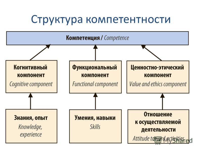 Структура компетентности