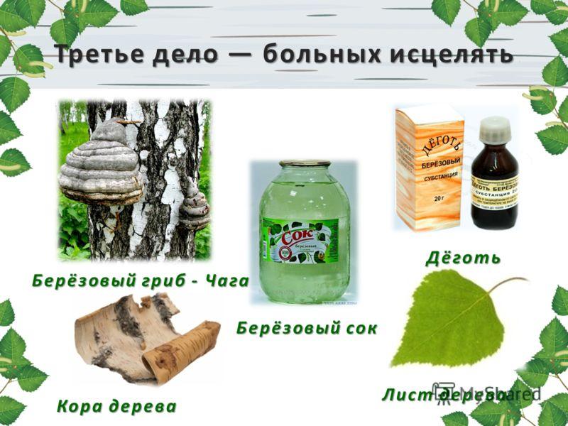 Третье дело больных исцелять Берёзовый гриб - Чага Кора дерева Берёзовый сок Дёготь Лист дерева