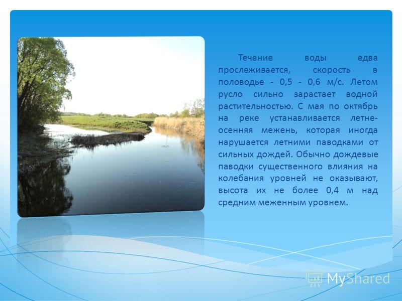 Течение воды едва прослеживается, скорость в половодье - 0,5 - 0,6 м/с. Летом русло сильно зарастает водной растительностью. С мая по октябрь на реке устанавливается летне- осенняя межень, которая иногда нарушается летними паводками от сильных дождей