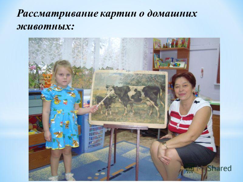 Рассматривание картин о домашних животных: