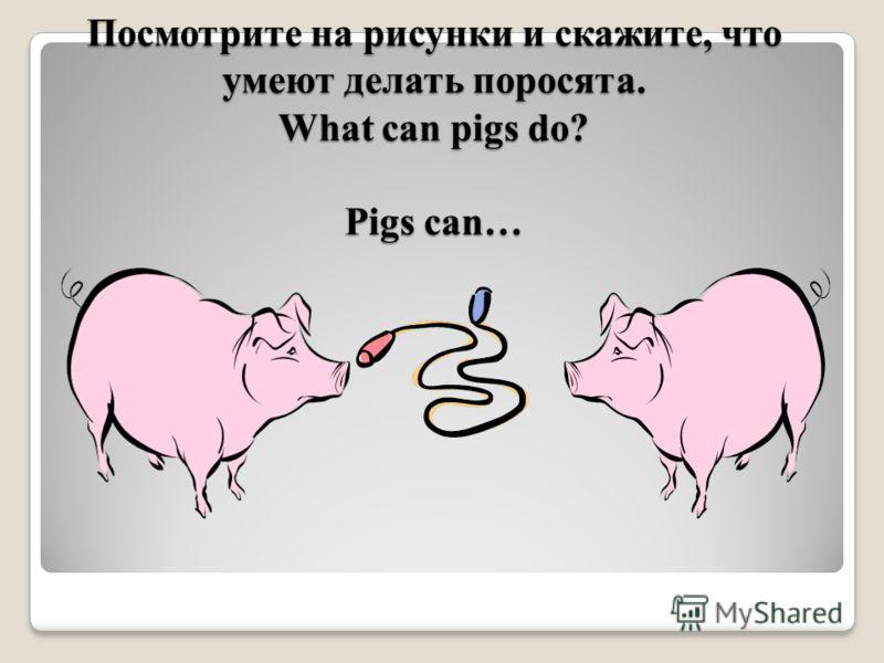Посмотрите на рисунки и скажите, что умеют делать поросята. What can pigs do? Pigs can…