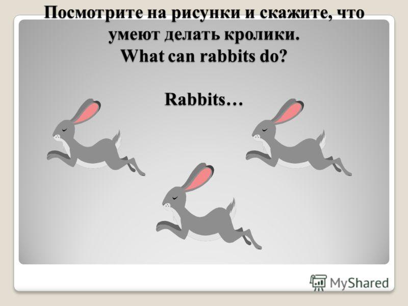 Посмотрите на рисунки и скажите, что умеют делать кролики. What can rabbits do? Rabbits…