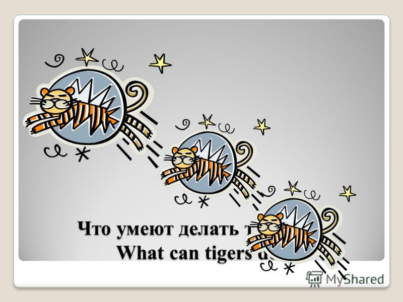 Что умеют делать тигрята? What can tigers do?