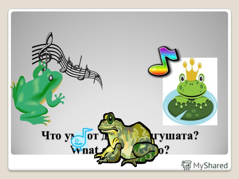 Что умеют делать лягушата? What can frogs do?