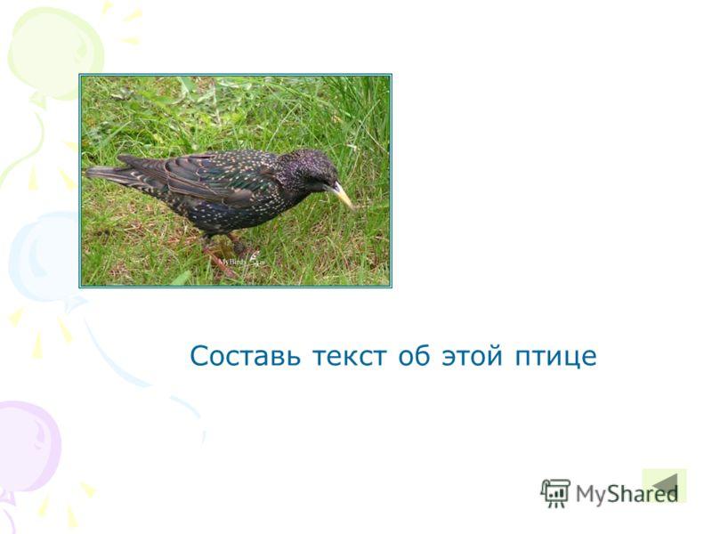 Составь текст об этой птице
