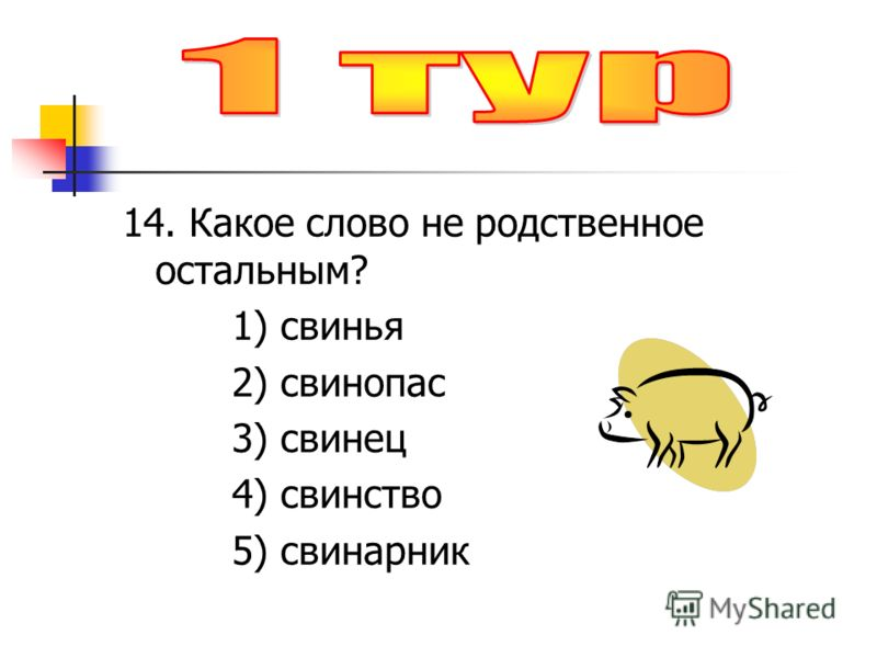 14. Какое слово не родственное остальным? 1) свинья 2) свинопас 3) свинец 4) свинство 5) свинарник