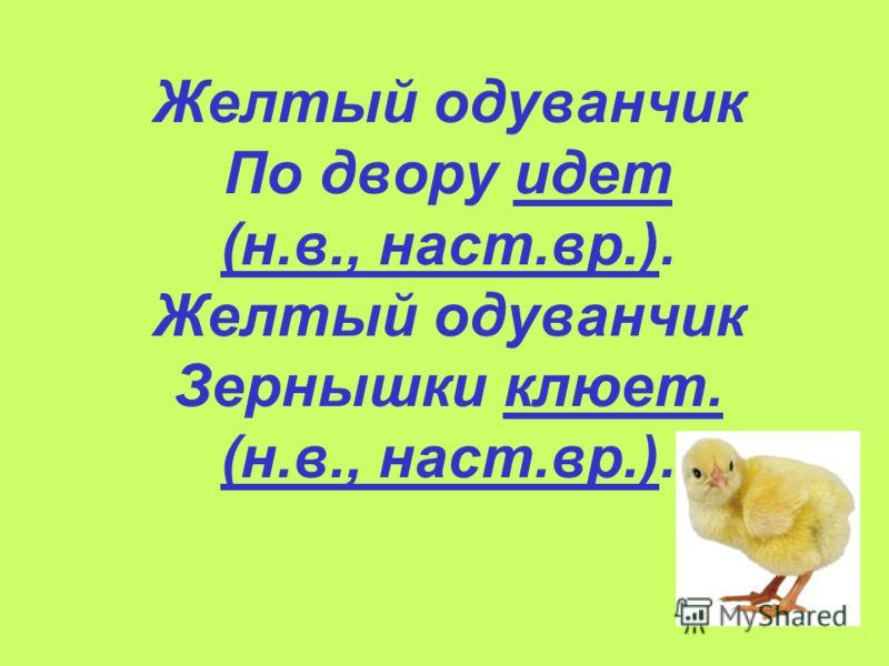 Желтый одуванчик По двору идет (н.в., наст.вр.). Желтый одуванчик Зернышки клюет. (н.в., наст.вр.).