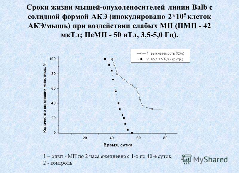 Сроки жизни мышей-опухоленосителей линии Balb с солидной формой АКЭ (инокулировано 2*10 5 клеток АКЭ/мышь) при воздействии слабых МП (ПМП - 42 мкТл; ПеМП - 50 нТл, 3,5-5,0 Гц). 1 – опыт - МП по 2 часа ежедневно с 1-х по 40-е суток; 2 - контроль