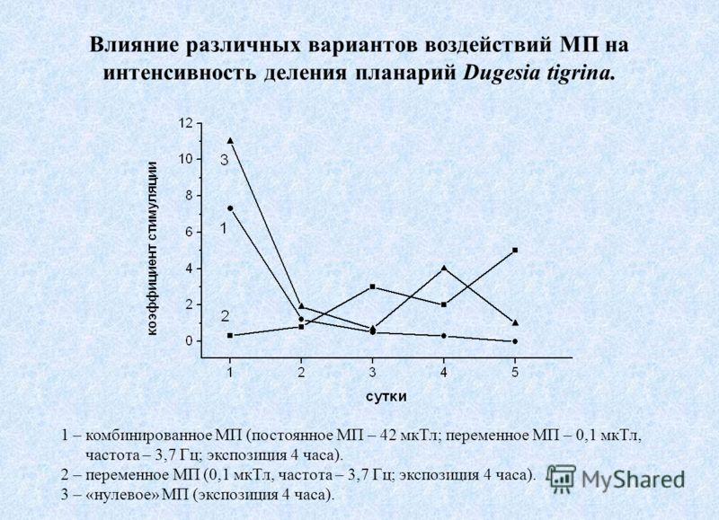 Влияние различных вариантов воздействий МП на интенсивность деления планарий Dugesia tigrina. 1 – комбинированное МП (постоянное МП – 42 мкТл; переменное МП – 0,1 мкТл, частота – 3,7 Гц; экспозиция 4 часа). 2 – переменное МП (0,1 мкТл, частота – 3,7