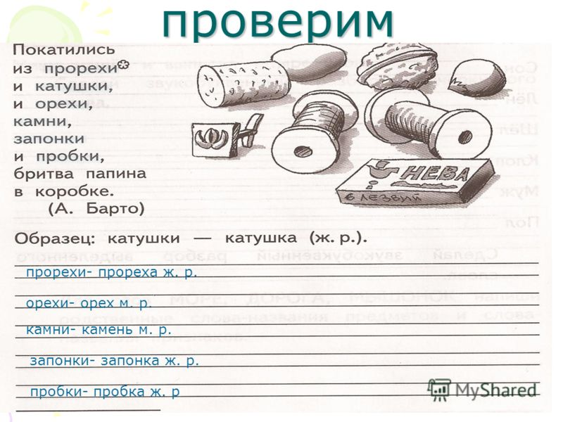проверим прорехи- прореха ж. р. орехи- орех м. р. камни- камень м. р. запонки- запонка ж. р. пробки- пробка ж. р