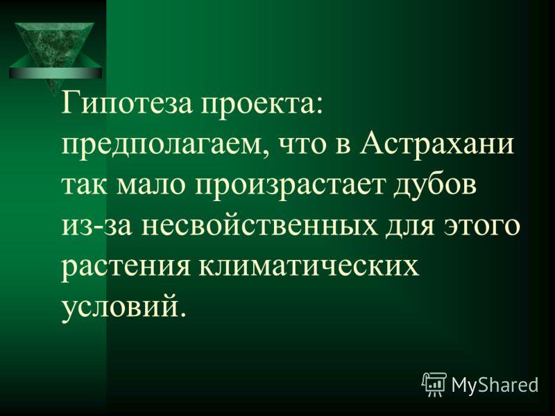 Гипотеза проекта: предполагаем, что в Астрахани так мало произрастает дубов из-за несвойственных для этого растения климатических условий.