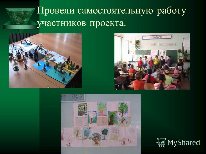 Провели самостоятельную работу участников проекта.