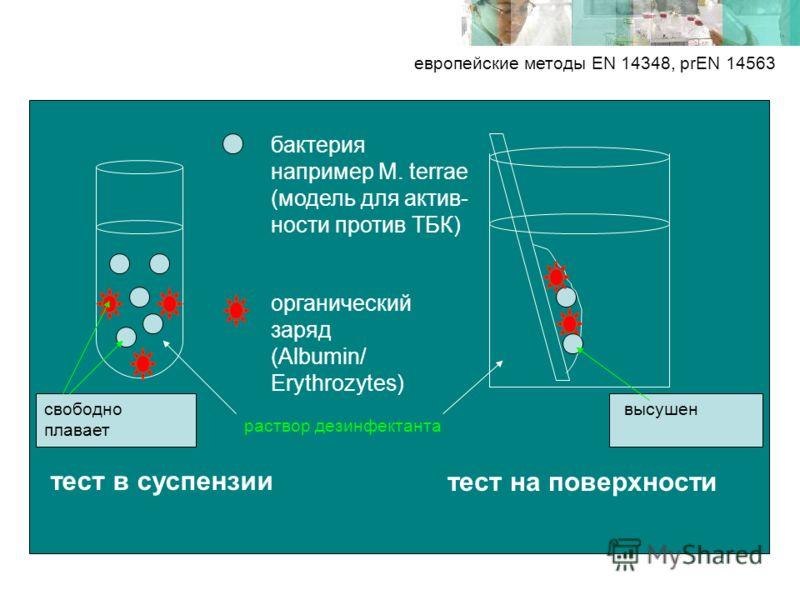 европейские методы EN 14348, prEN 14563 бактерия например M. terrae (модель для актив- ности против ТБК) органический заряд (Albumin/ Erythrozytes) тест в суспензии тест на поверхности раствор дезинфектанта высушенсвободно плавает