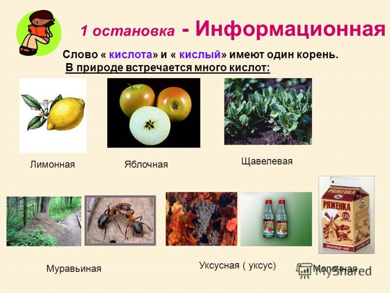 1 остановка - Информационная Слово « кислота» и « кислый» имеют один корень. В природе встречается много кислот: Щавелевая ЯблочнаяЛимонная Уксусная ( уксус) МуравьинаяМолочная