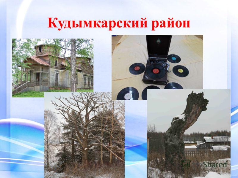 Кудымкарский район