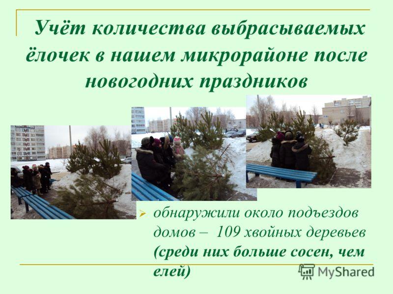 Учёт количества выбрасываемых ёлочек в нашем микрорайоне после новогодних праздников обнаружили около подъездов домов – 109 хвойных деревьев (среди них больше сосен, чем елей)