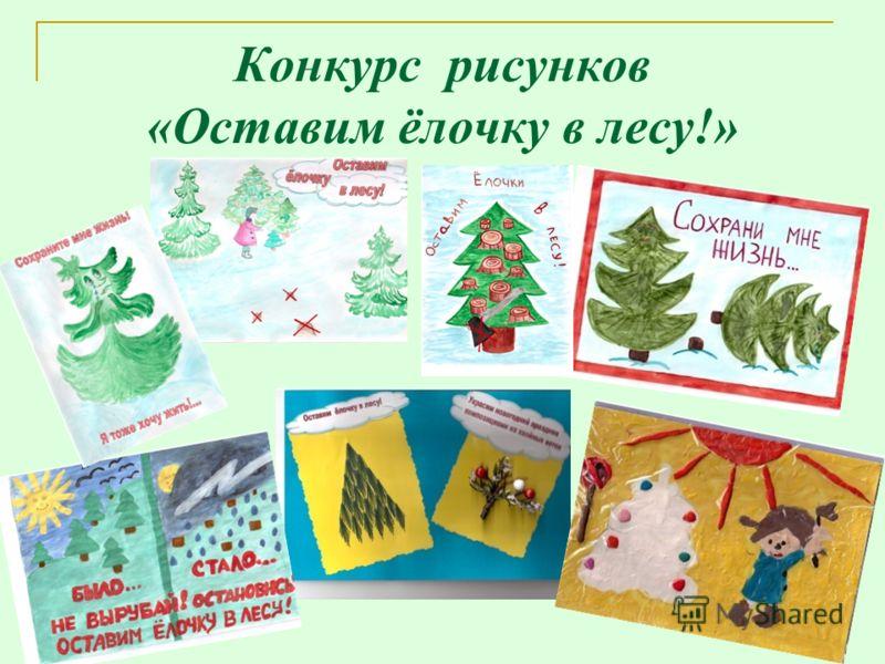 Конкурс рисунков «Оставим ёлочку в лесу!»