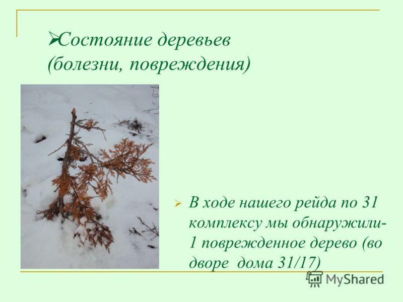 Состояние деревьев (болезни, повреждения) В ходе нашего рейда по 31 комплексу мы обнаружили- 1 поврежденное дерево (во дворе дома 31/17)