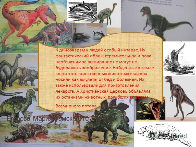 Егорова Мария Томск 2010 7 класс К динозаврам у людей особый интерес. Их фантастический облик, стремительное и пока необъяснимое вымирание не могут не будоражить воображение. Найденные в земле кости этих таинственных животных издавна носили как амуле