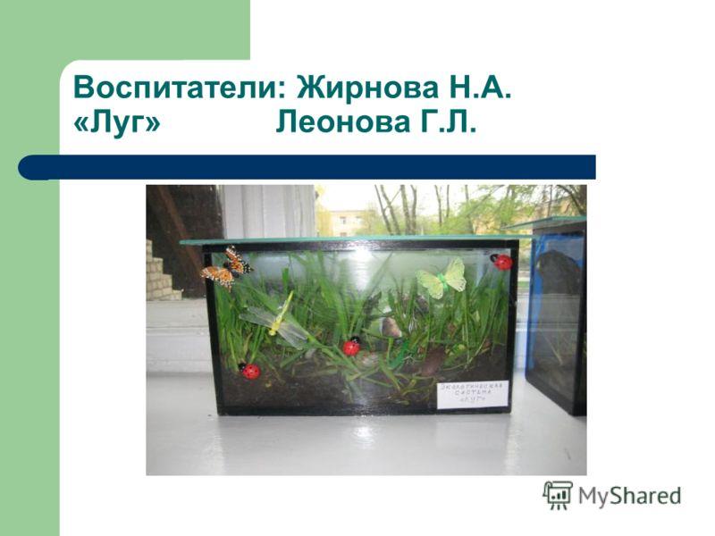 Воспитатели: Жирнова Н.А. «Луг» Леонова Г.Л.