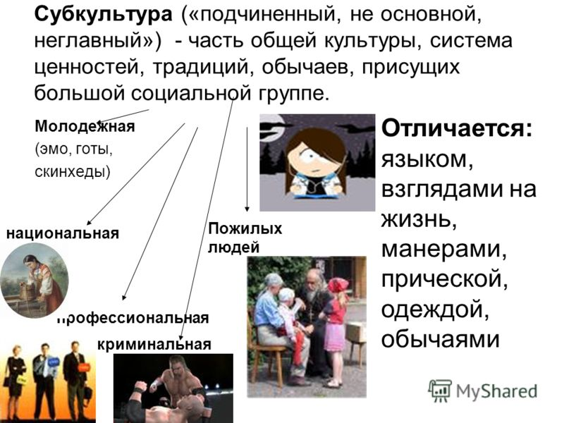 Субкультура («подчиненный, не основной, неглавный») - часть общей культуры, система ценностей, традиций, обычаев, присущих большой социальной группе. Молодежная (эмо, готы, скинхеды) национальная профессиональная криминальная Пожилых людей Отличается
