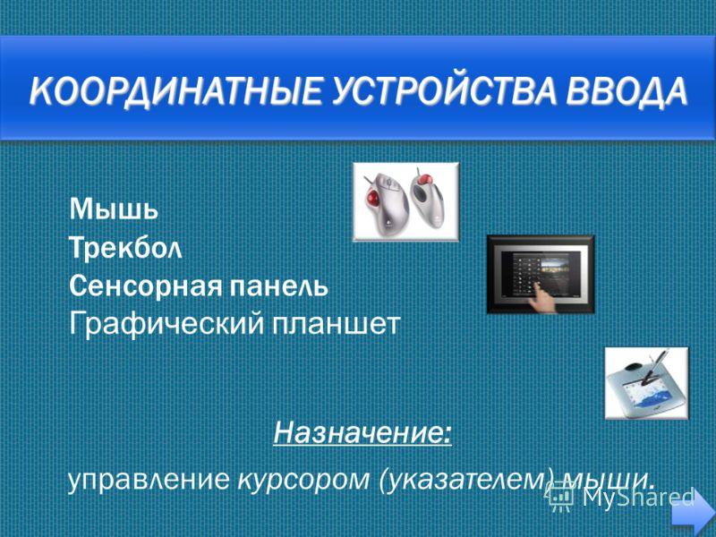 Назначение: управление курсором (указателем) мыши. Мышь Трекбол Сенсорная панель Графический планшет