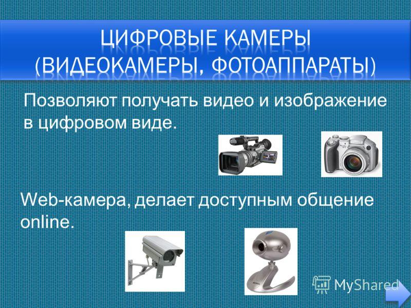 Позволяют получать видео и изображение в цифровом виде. Web-камера, делает доступным общение online.