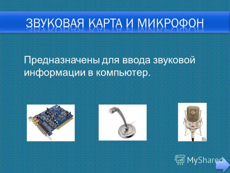Предназначены для ввода звуковой информации в компьютер.
