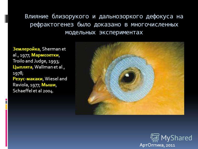 Влияние близорукого и дальнозоркого дефокуса на рефрактогенез было доказано в многочисленных модельных экспериментах Землеройка, Sherman et al., 1977; Мармозетки, Troilo and Judge, 1993; Цыплята, Wallman et al., 1978; Резус-макаки, Wiesel and Raviola