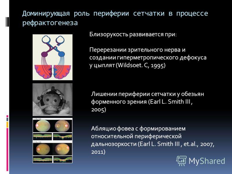 Доминирующая роль периферии сетчатки в процессе рефрактогенеза Абляцио фовеа с формированием относительной периферической дальнозоркости (Earl L. Smith III, et.al., 2007, 2011) Близорукость развивается при: Перерезании зрительного нерва и создании ги
