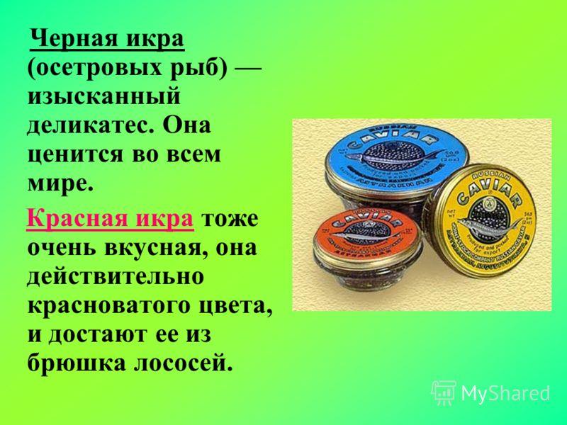 Черная икра (осетровых рыб) изысканный деликатес. Она ценится во всем мире. Красная икра тоже очень вкусная, она действительно красноватого цвета, и достают ее из брюшка лососей.