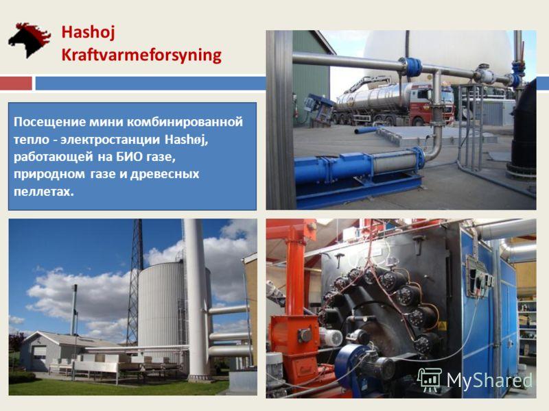 Hashoj Kraftvarmeforsyning Посещение мини комбинированной тепло - электростанции Hash ø j, работающей на БИО газе, природном газе и древесных пеллетах.