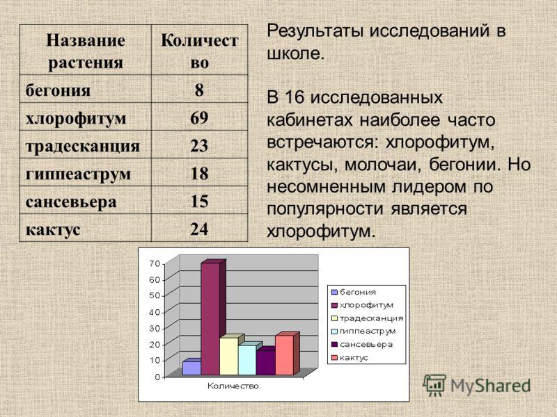 Результаты исследований в школе. В 16 исследованных кабинетах наиболее часто встречаются: хлорофитум, кактусы, молочаи, бегонии. Но несомненным лидером по популярности является хлорофитум. Название растения Количест во бегония8 хлорофитум69 традескан