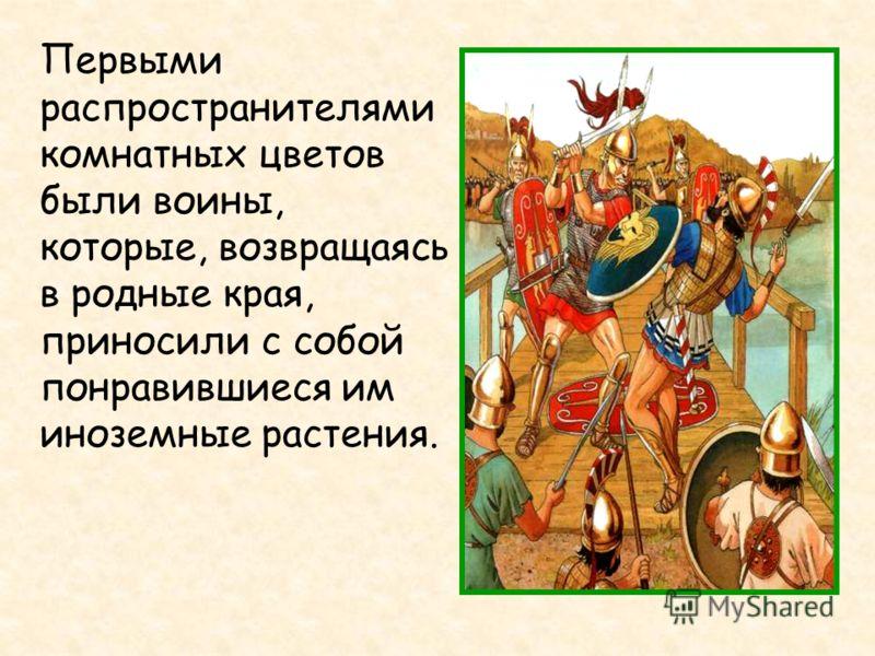 Первыми распространителями комнатных цветов были воины, которые, возвращаясь в родные края, приносили с собой понравившиеся им иноземные растения.
