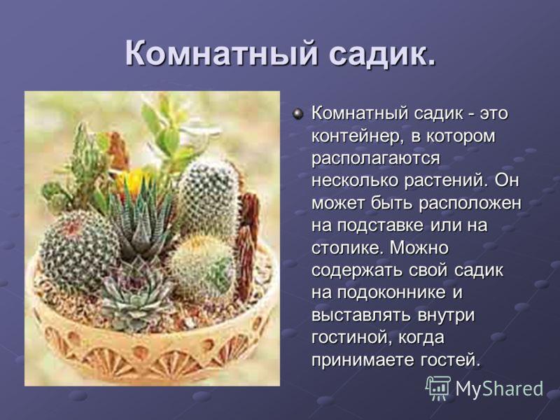Комнатный садик. Комнатный садик - это контейнер, в котором располагаются несколько растений. Он может быть расположен на подставке или на столике. Можно содержать свой садик на подоконнике и выставлять внутри гостиной, когда принимаете гостей.